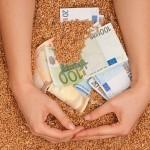 Subsidie mogelijkheid voor Jonge Landbouwers