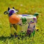 Opnieuw subsidiemogelijkheden voor jonge landbouwers!